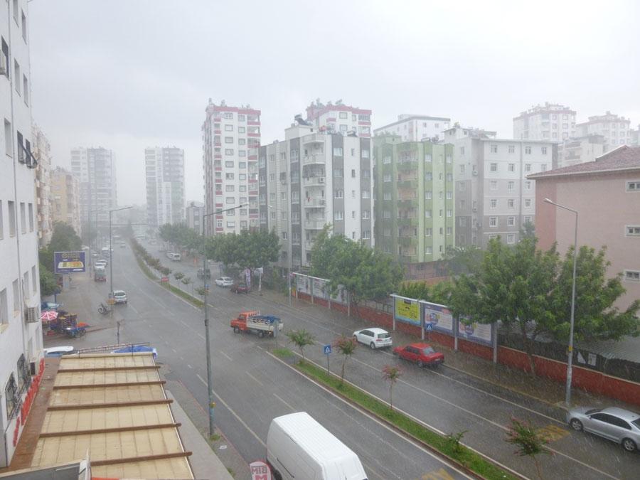 Temmuz Yağmurları 1