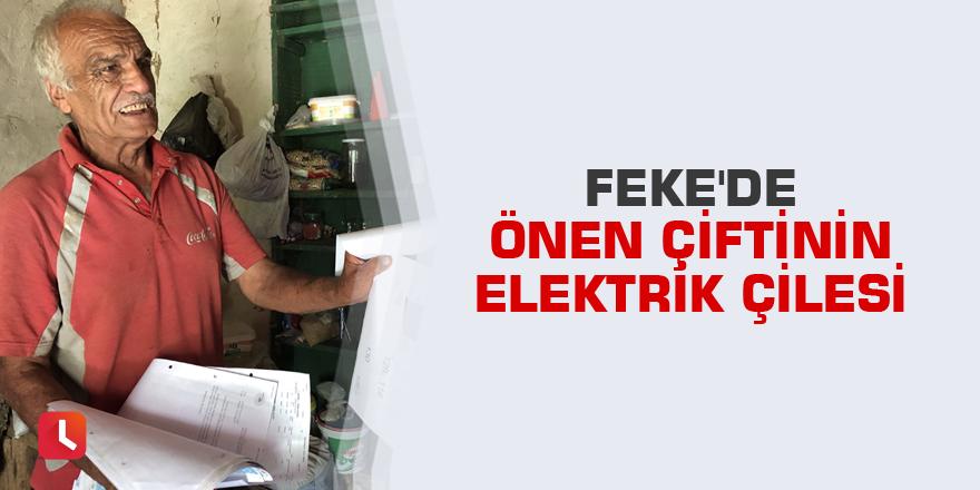 Feke'de Önen çiftinin elektrik çilesi