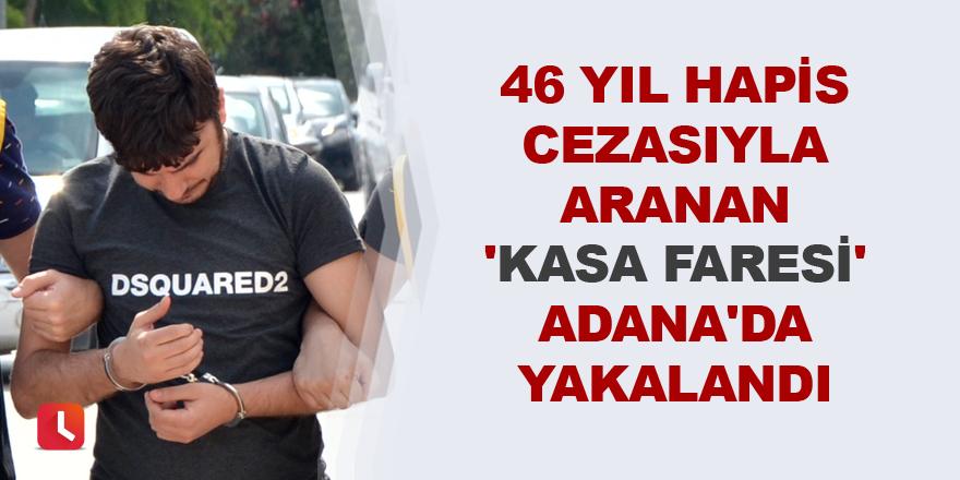 'Kasa faresi' Adana'da yakalandı