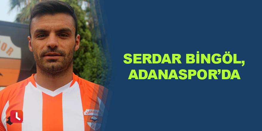 Serdar Bingöl, Adanaspor'da