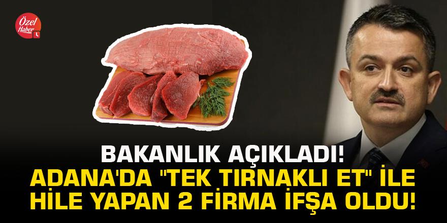 """Bakanlık açıkladı! Adana'da """"tek tırnaklı et"""" ile hile yapan 2 firma ifşa oldu!"""
