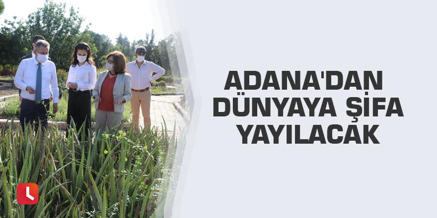 Adana'dan dünyaya şifa yayılacak