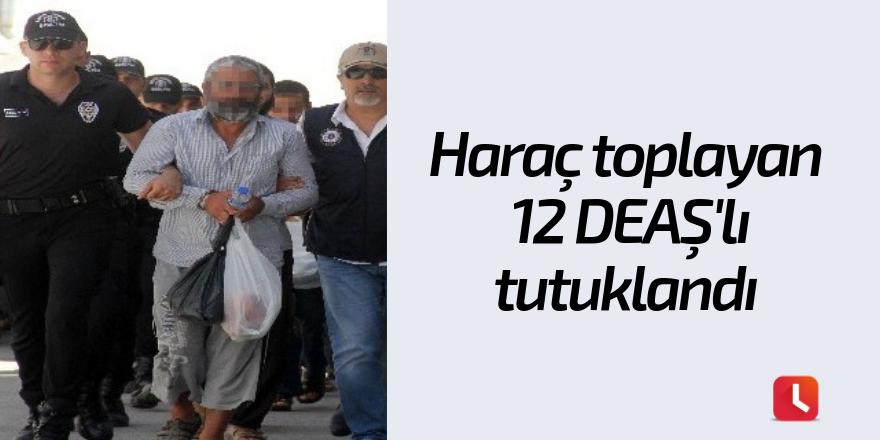 Haraç toplayan 12 DEAŞ'lı tutuklandı