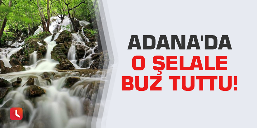 Adana'da o şelale buz tuttu!
