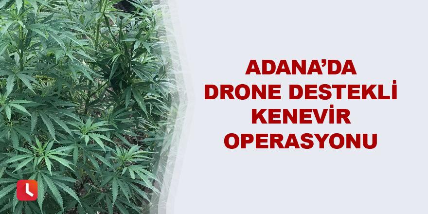 Adana'da drone destekli kenevir operasyonu