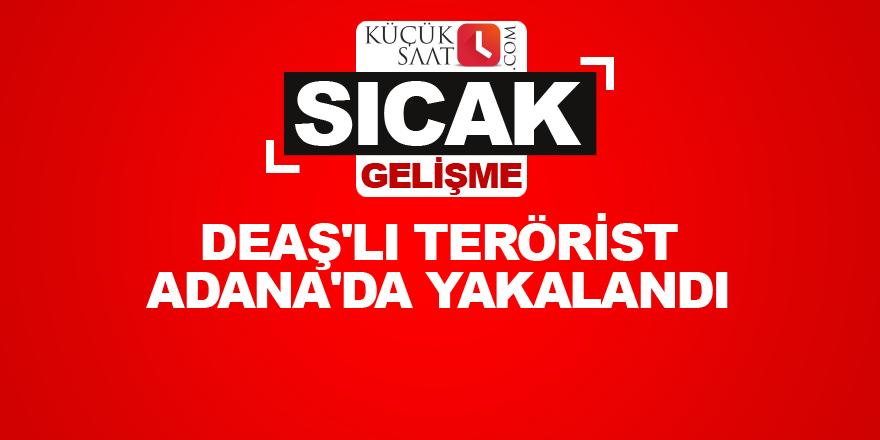 DEAŞ'lı terörist Adana'da yakalandı