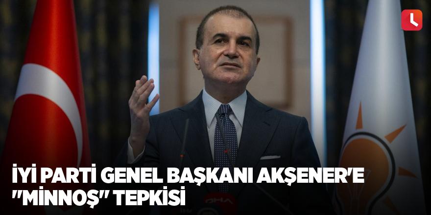 """AK Parti Sözcüsü Çelik'ten, İYİ Parti Genel Başkanı Akşener'e """"minnoş"""" tepkisi"""