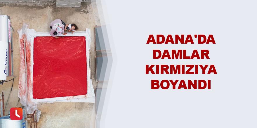 Adana'da damlar kırmızıya boyandı