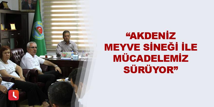 """""""Akdeniz Meyve Sineği ile mücadelemiz sürüyor"""""""