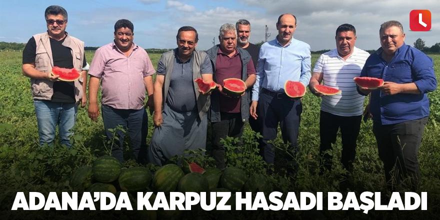 Adana'da karpuz hasadı başladı