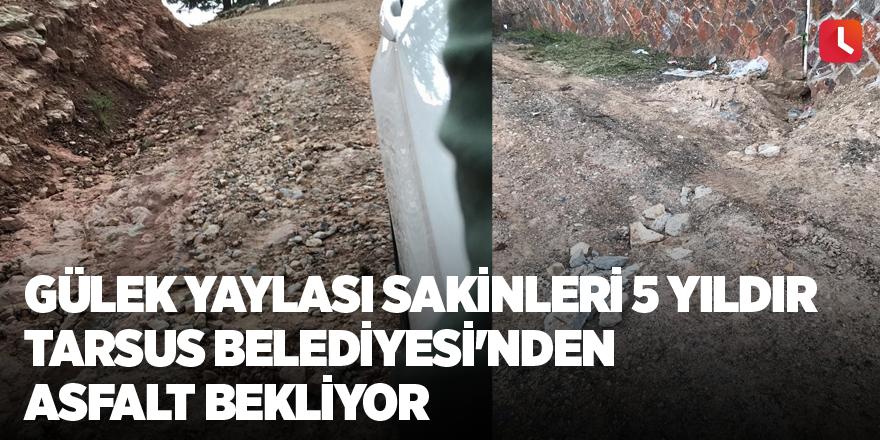 Gülek Yaylası sakinleri 5 yıldır Tarsus Belediyesi'nden asfalt bekliyor