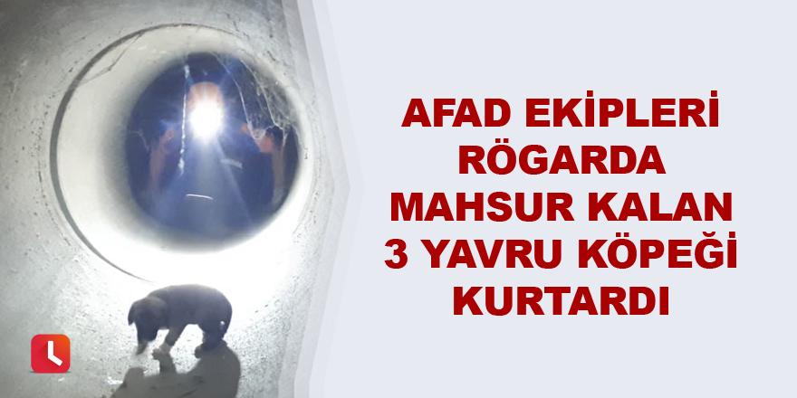 AFAD ekipleri rögarda mahsur kalan 3 yavru köpeği kurtardı