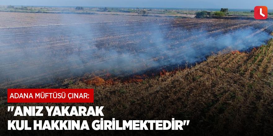 """Adana Müftüsü Çınar: """"Anız yakarak kul hakkına girilmektedir"""""""
