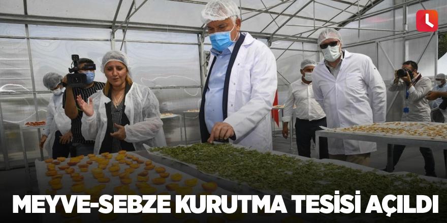 Meyve-sebze kurutma tesisi açıldı
