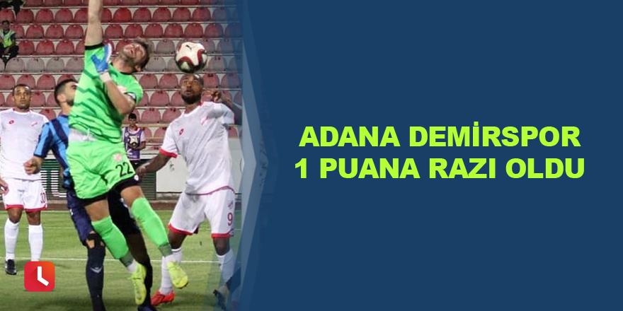 Adana Demirspor 1 puana razı oldu
