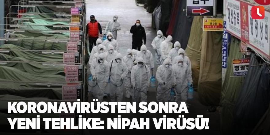 Koronavirüsten sonra yeni tehlike: Nipah virüsü!