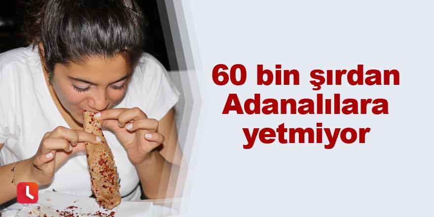60 bin şırdan Adanalılara yetmiyor