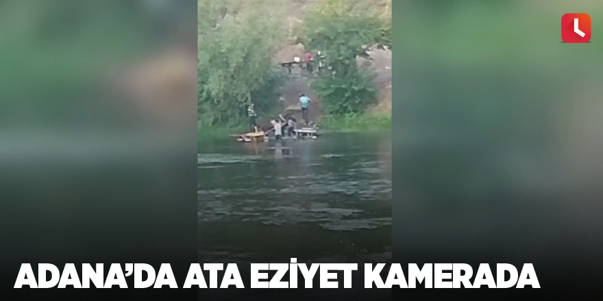 Adana'da ata eziyet kamerada