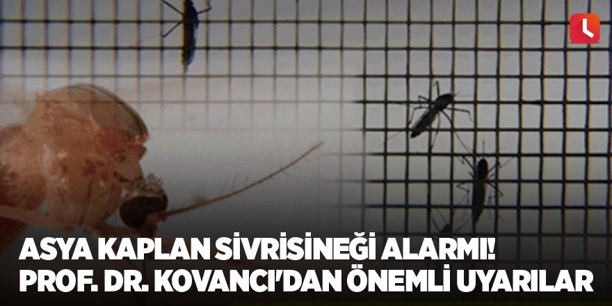 Asya Kaplan Sivrisineği alarmı! Prof. Dr. Kovancı'dan önemli uyarılar