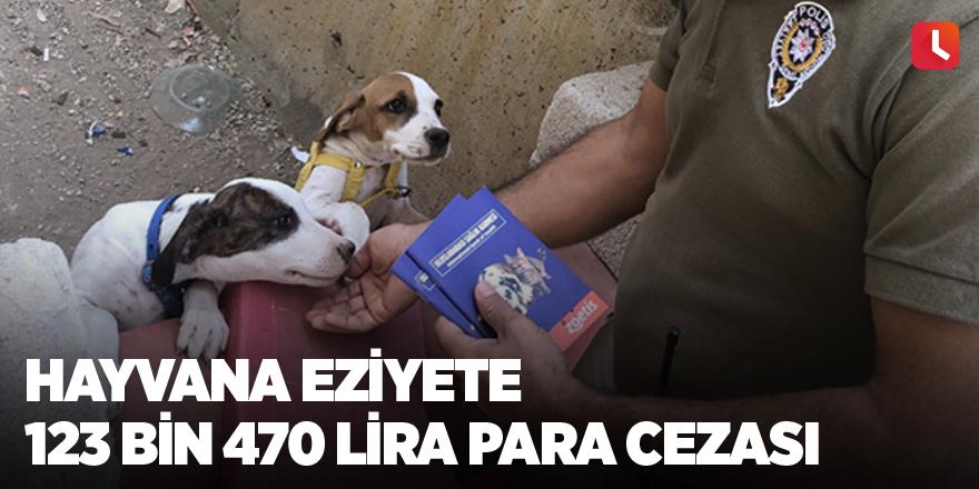 Hayvana eziyete 123 bin 470 lira para cezası