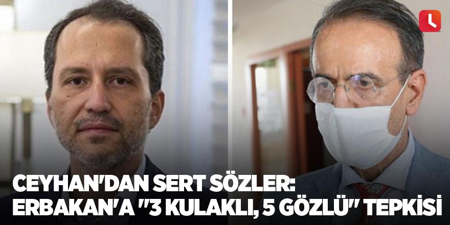 """Ceyhan'dan sert sözler: Erbakan'a """"3 kulaklı, 5 gözlü"""" tepkisi"""