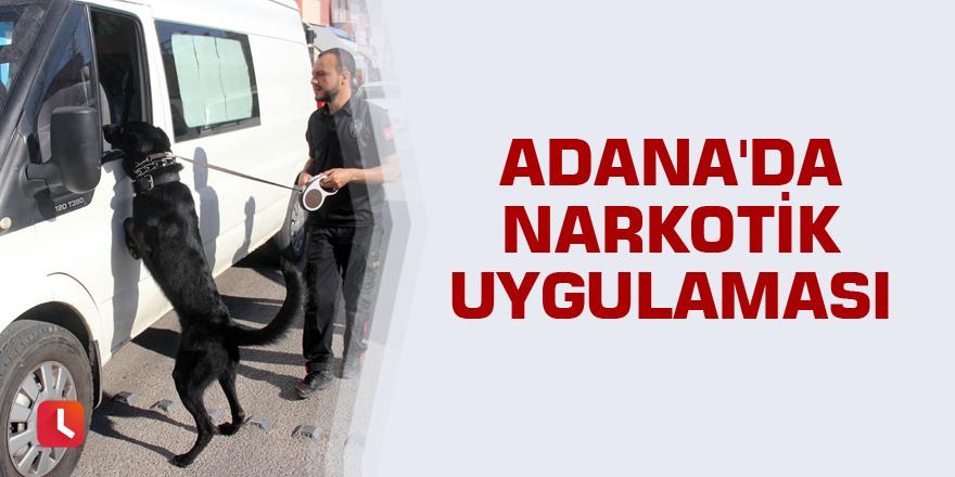 Adana'da narkotik uygulaması
