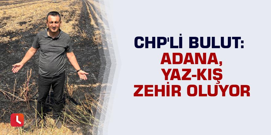 CHP'li Bulut: Adana, Yaz-Kış Zehir Oluyor