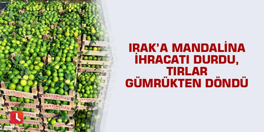 Irak'a mandalina ihracatı durdu, tırlar gümrükten döndü