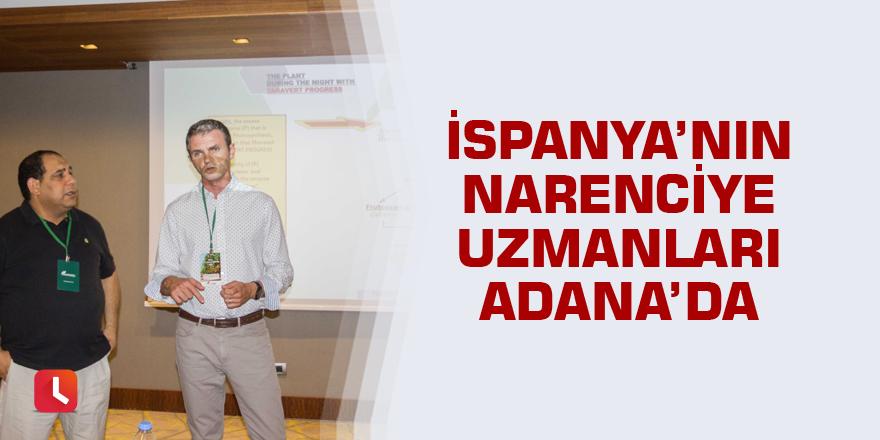 İspanya'nın narenciye uzmanları Adana'da