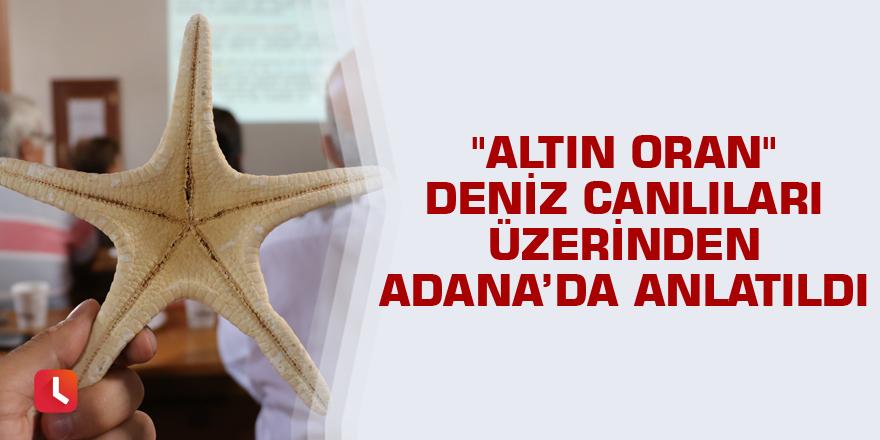 """""""Altın Oran"""" deniz canlıları üzerinden Adana'da anlatıldı"""