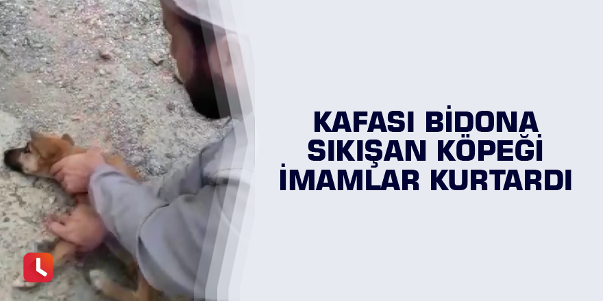 Kafası bidona sıkışan köpeği imamlar kurtardı