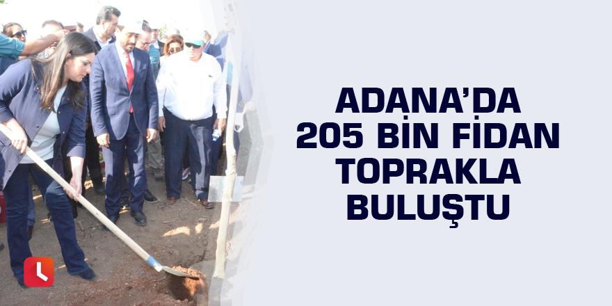 Adana'da 205 bin fidan toprakla buluştu