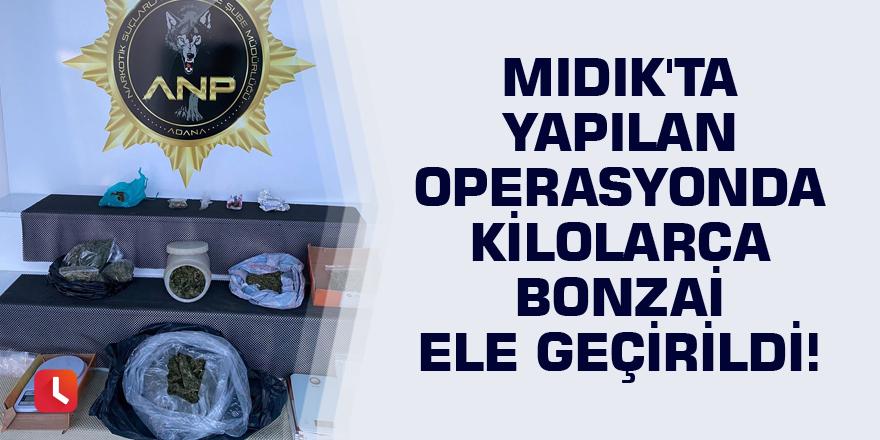 Mıdık'ta yapılan operasyonda kilolarca bonzai ele geçirildi!