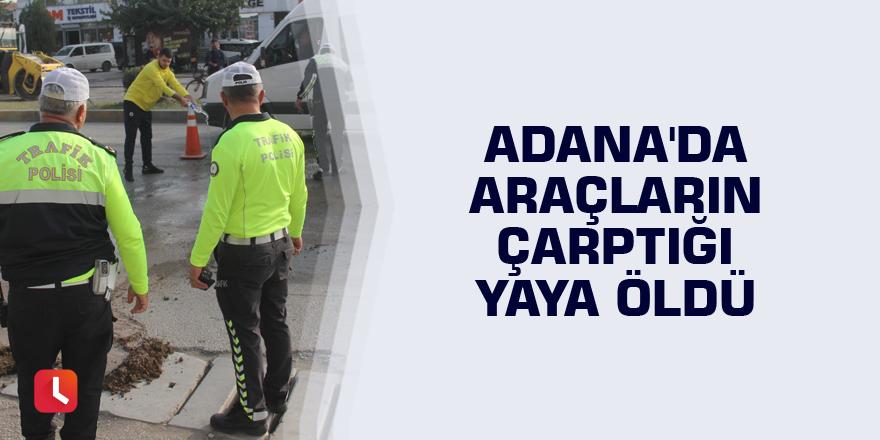 Adana'da araçların çarptığı yaya öldü