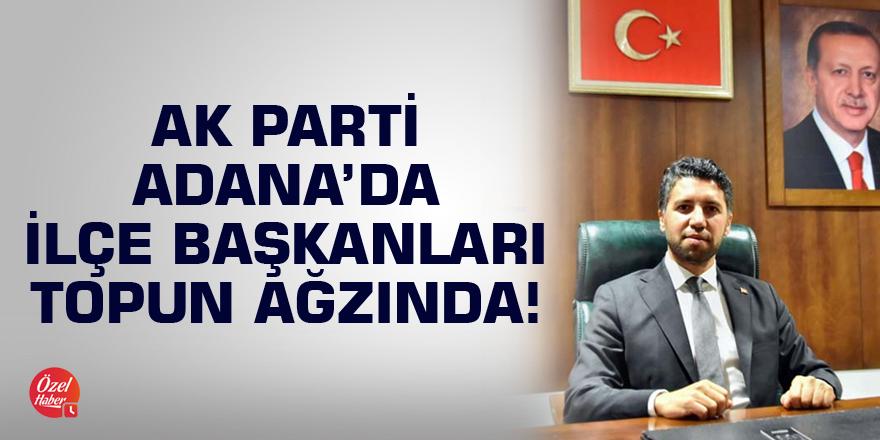 AK Parti'de ilçe başkanları topun ağzında!