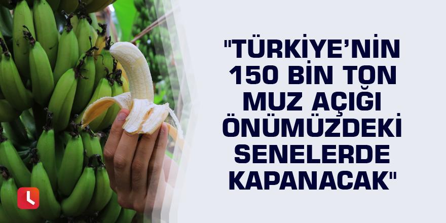 """""""Türkiye'nin 150 bin ton muz açığı önümüzdeki senelerde kapanacak"""""""