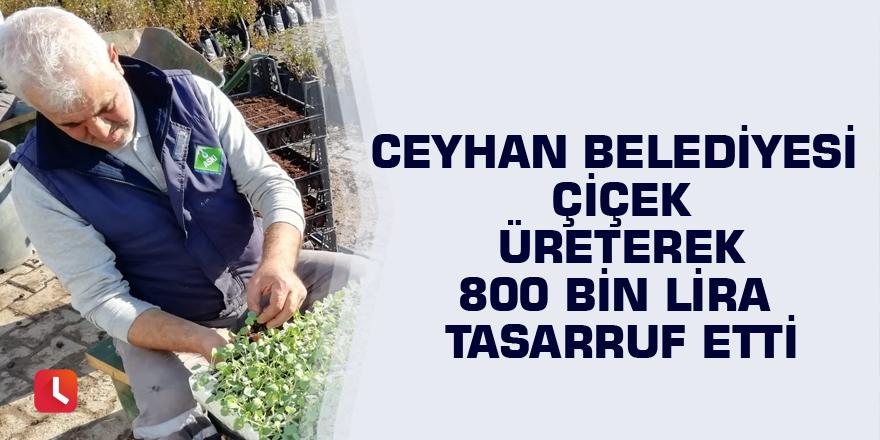 Ceyhan Belediyesi çiçek üreterek 800 bin lira tasarruf etti