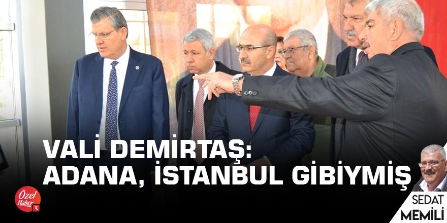 Vali Demirtaş: Adana, İstanbul gibiymiş