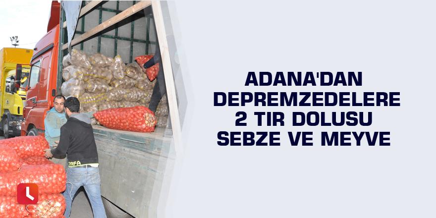 Adana'dan depremzedelere 2 tır dolusu sebze ve meyve