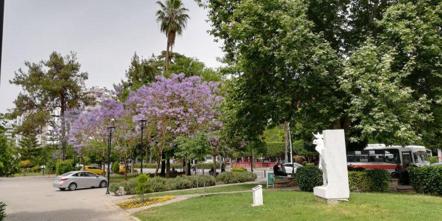 Adana'da yaz sıcağı ve renkleri