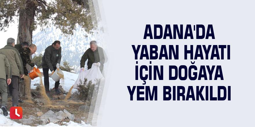 Adana'da yaban hayatı için doğaya yem bırakıldı