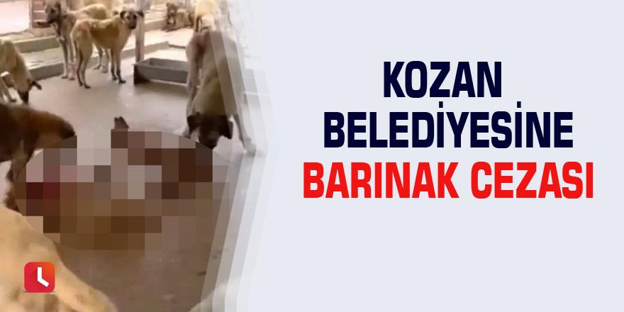 Kozan Belediyesine barınak cezası