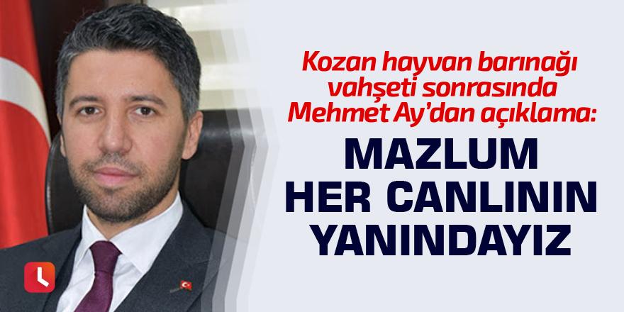Mehmet Ay: Mazlum her canlının yanındayız
