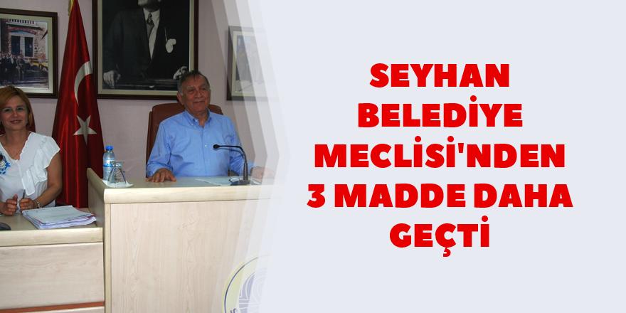Seyhan Belediye Meclisi'nden 3 madde daha geçti