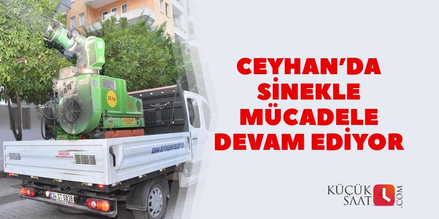 Ceyhan'da sinekle mücadele devam ediyor