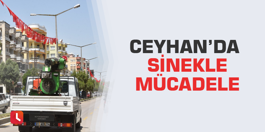 Ceyhan'da sinekle mücadele