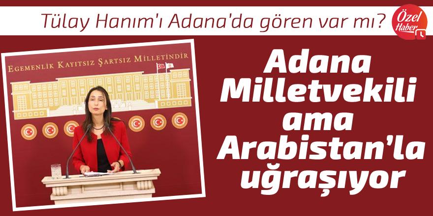 Adana Milletvekili ama Arabistan'la uğraşıyor