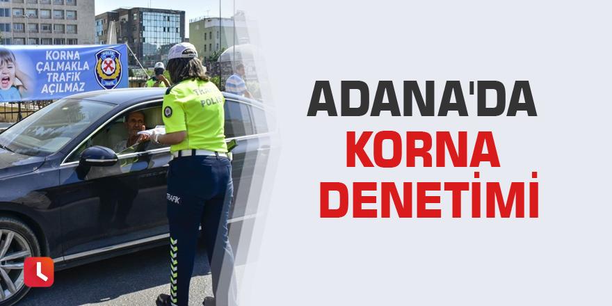 Adana'da korna denetimi